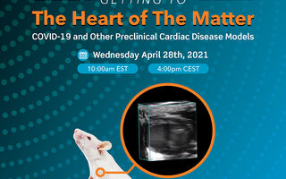 The Heart of the Matter Cardio Webinar