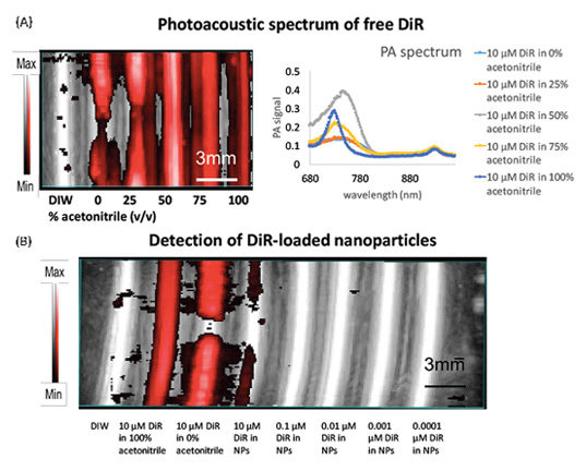 Photoacoustic spectrum of free DiR